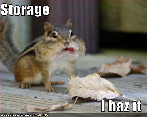 funny-pictures-chipmunk-has-storage