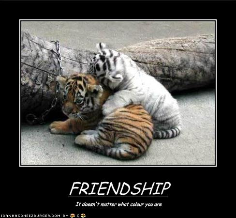 funny-pictures-friendship-knows-no-colors