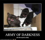 funny-pictures-the-army-of-darkness-is-rather-cute