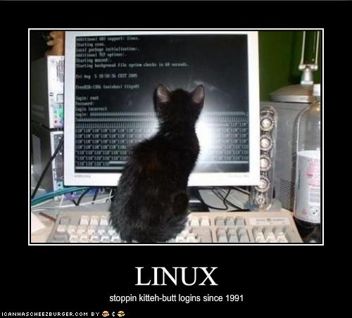 funny-pictures-your-kitten-uses-linux