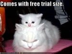 funny-pictures-cat-comes-with-trial-size