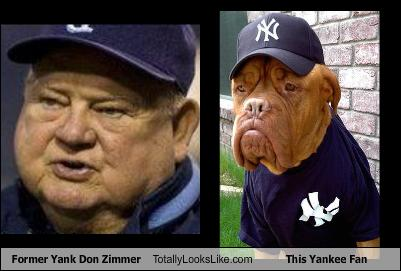 former-yank-don-zimmer-totally-looks-like-this-yankee-fan