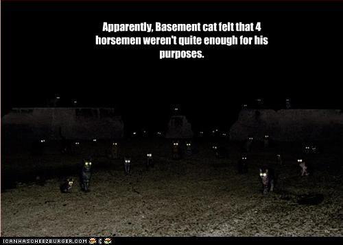 funny-pictures-basement-cat-has-many-horsemen