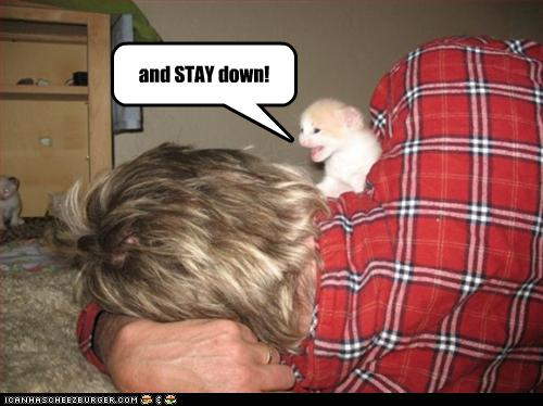 funny-pictures-kitten-conquers-man