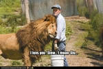 funny-pictures-lion-loves-his-caretaker