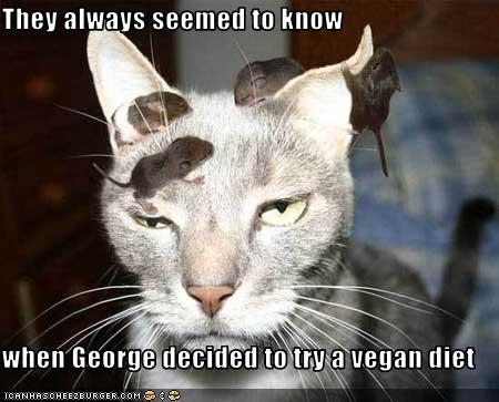 funny-pictures-your-cat-is-vegan