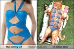 blue-bathing-suit-totally-looks-like-cat-in-blue-bikini