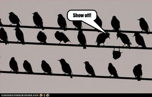 funny-pictures-bird-shows-off