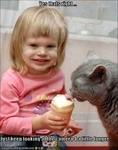 funny-pictures-cat-eats-ice-cream