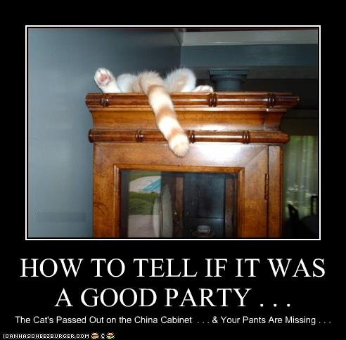 funny-pictures-cat-had-a-good-party