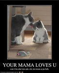 funny-pictures-cat-has-loving-mother