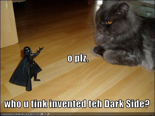 funny-pictures-cat-invented-dark-side