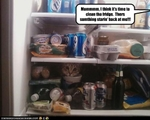 funny-pictures-cat-is-in-fridge
