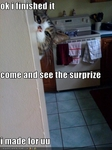 funny-pictures-cat-made-you-a-surprise