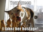 funny-pictures-cat-takes-queen-hostage