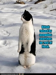 funny-pictures-cat-was-raised-by-penguins