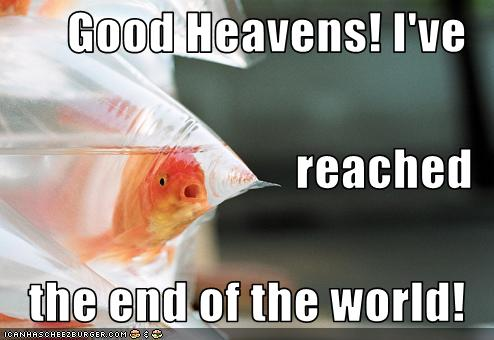 funny-pictures-fish-reaches-end-of-world