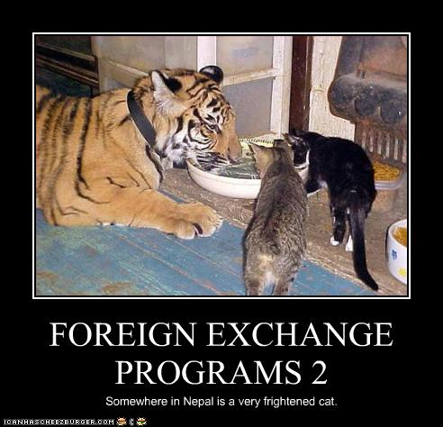 Foreign exchange student porn