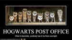 funny-pictures-hogwarts-has-a-post-office