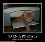 funny-pictures-kitten-comes-from-narnia