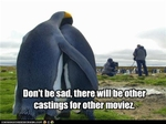 funny-pictures-penguins-did-not-make-cut