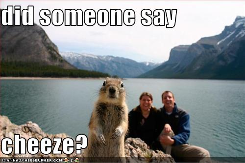 funny-pictures-squirrel-wants-cheese