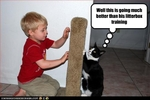 funny-pictures-cat-and-toddler-play