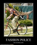 funny-pictures-duck-is-member-of-fashion-police