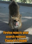 funny-pictures-fox-rejects-request