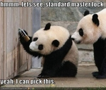 funny-pictures-pandas-pick-lock
