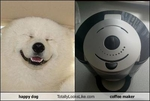 happy-dog-totally-looks-like-coffee-maker