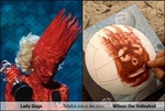 lady-gaga-totally-looks-like-wilson-the-volleyball